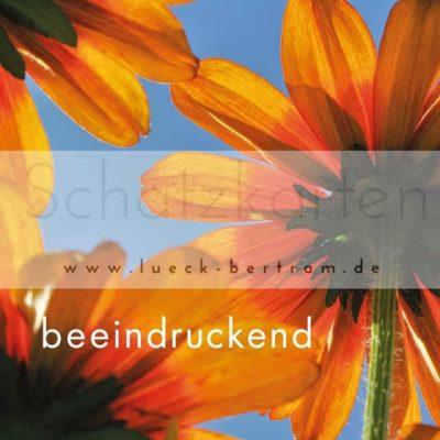 Set 1 Wertschätzungskarten | beeindruckend | lueck-bertram.de